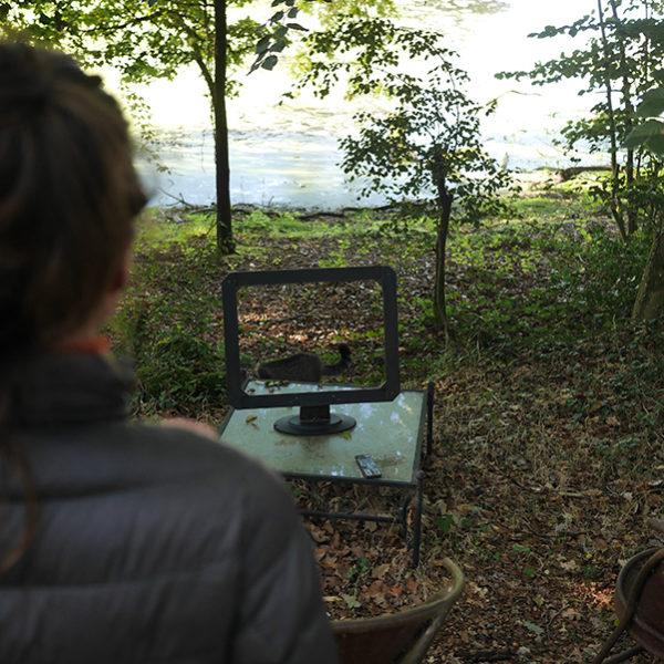Télé Naturelle à La Ville Heleuc