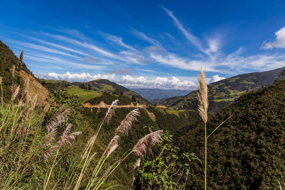 Amazonie Hopineo Ecotourisme