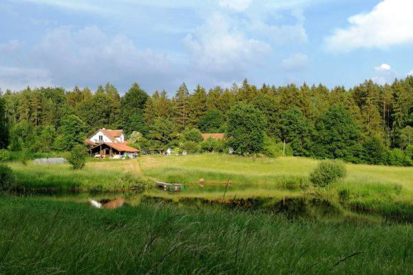 Chambre d'hôtes Letnia Kuchnia Cuisine d'été et forêt